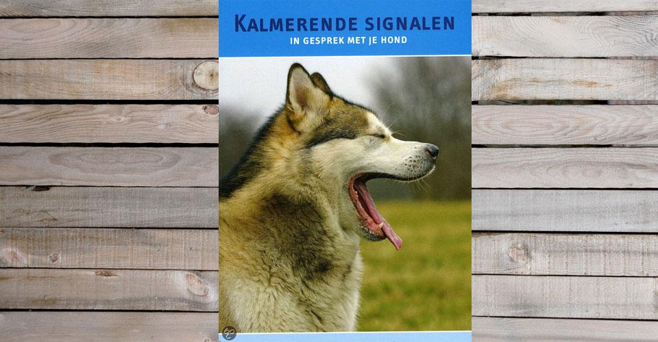Kalmerende signalen, in gesprek met je hond