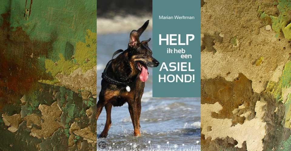 Help, ik heb een asielhond!