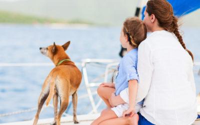 schip ahoy, hond aan boord
