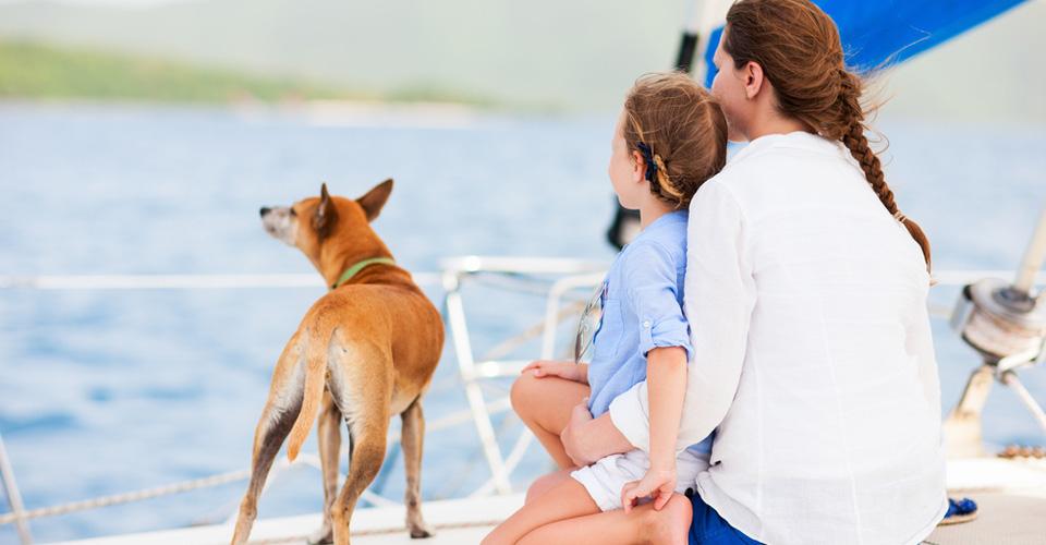 Met de hond het water op