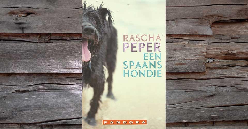 Een Spaans hondje