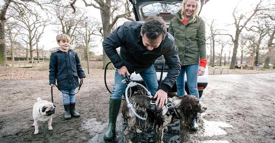 Een schone hond met hondensalon op 4 wielen