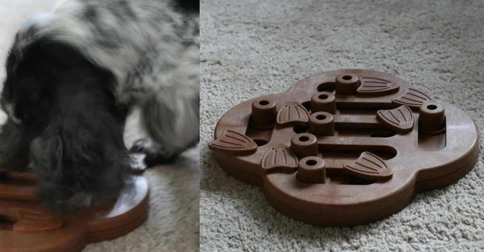 Hondenpuzzel: Speel-o-theek voor honden