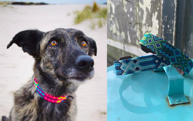 Kleurrijke Mexicaanse hondenhalsbanden van Boooi