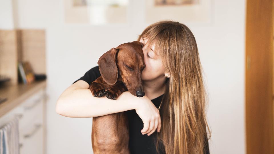 14 tips voor de leukste dierendag met je hond