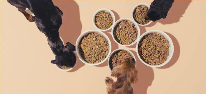 honden eten maaltijden van DogChef