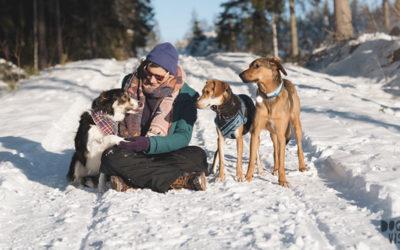fenne van dogvision met haar honden